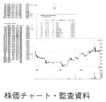 株価チャート・監査資料